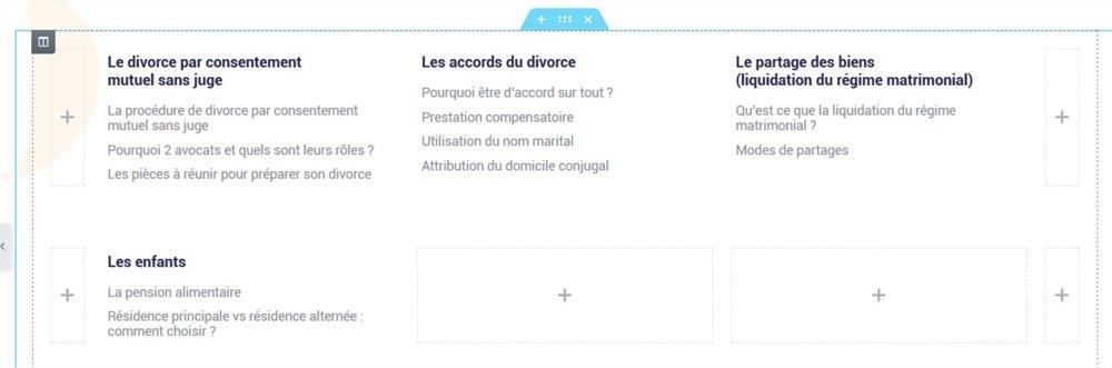 Elementor  Fiches informations - Mozilla Firefox.jpg