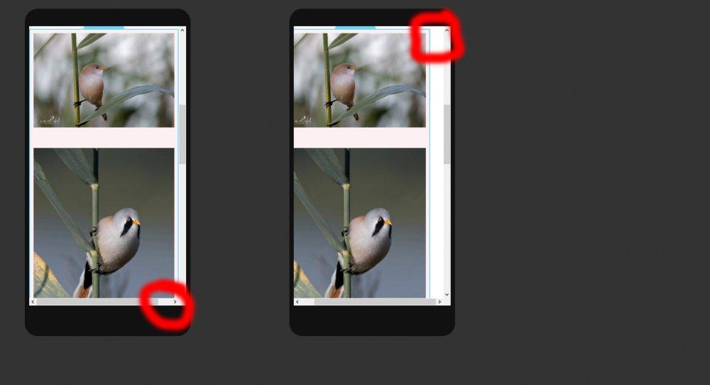 Elementor_Mobile-Gallery.jpg